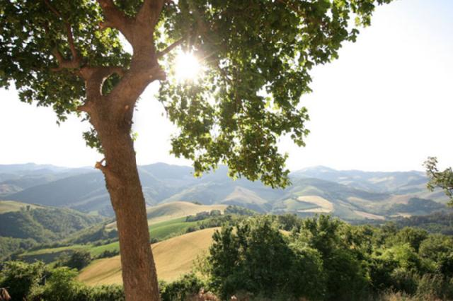 Girfalco country house BB Urbino