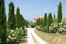 | Case per ferie | Uliveto Casa Vacanze Pinturetta