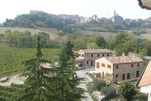| Appartamenti | Bed & Breakfast | Agriturismo | Aziende agricole | Agriturismo Terre Vineate Montalto delle Marche