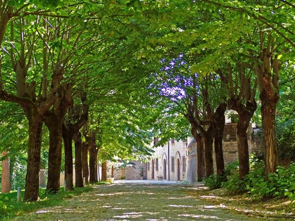 Villa Fontalba Smirra di Cagli
