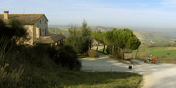 | Agriturismo | Aziende agricole | Country house | Agriturismo Il Rustico  Montefortino Arcevia (AN)
